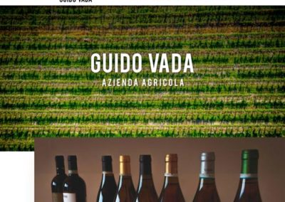 Sito web azienda agricola vini Guido Vada